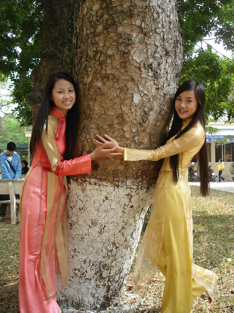 2_girls_in_aodai_and_a_tree